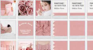 Mellow Rose Pantone Trend Featured Image