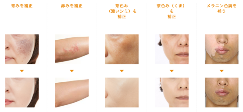 Shiseido Perfect Cover Foundation Examples