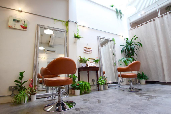 Good Affordable Hair Salon Singapore - Hair Studio Flamingo