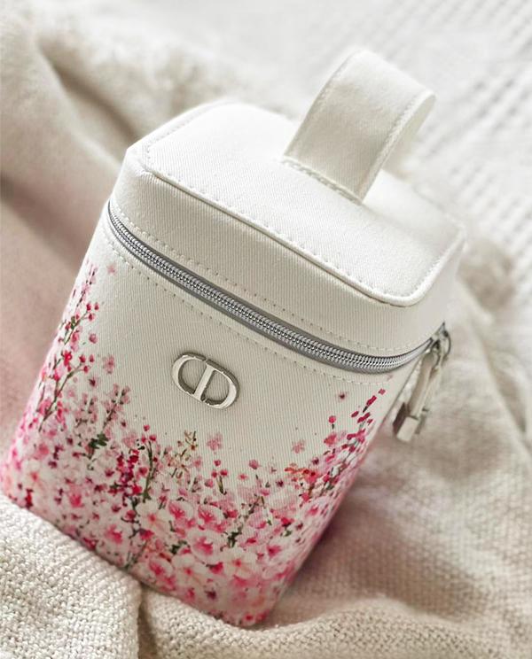 dior vanity kit gwp bag